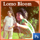 JinWook's Lomographic Bloom - GraphicRiver Item for Sale