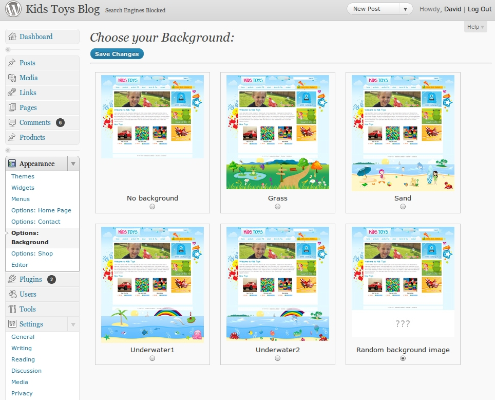 "Kids Toys - WordPress Shop Theme - You can choose different backgrounds options as well. This theme comes with 5 different background options, and a ""random"" option. You can also create your own background images (have a look in the wp-content/kids_toys/backgrounds/ folder)."