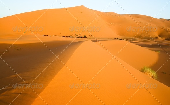 Moroccan desert dune background - Stock Photo - Images