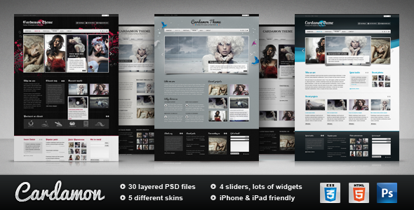 ThemeForest Cardamon Multipurpose HTML Template 1328370