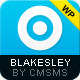 Blakesley - Premium Business & Portfolio wordpress - ThemeForest Item for Sale