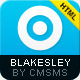Blakesley - HTML Business & Portfolio template - ThemeForest Item for Sale