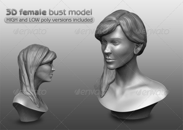 3DOcean 3D Female Bust Model 3D Models -  Humans  Female  Teens and Adults 163623