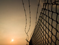 Barbed Wire Fence - PhotoDune Item for Sale