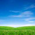 Sky and green grass - PhotoDune Item for Sale