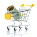 Dollars in the Shopping Cart  - PhotoDune Item for Sale