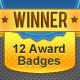 12 Colorful Award Badges - GraphicRiver Item for Sale