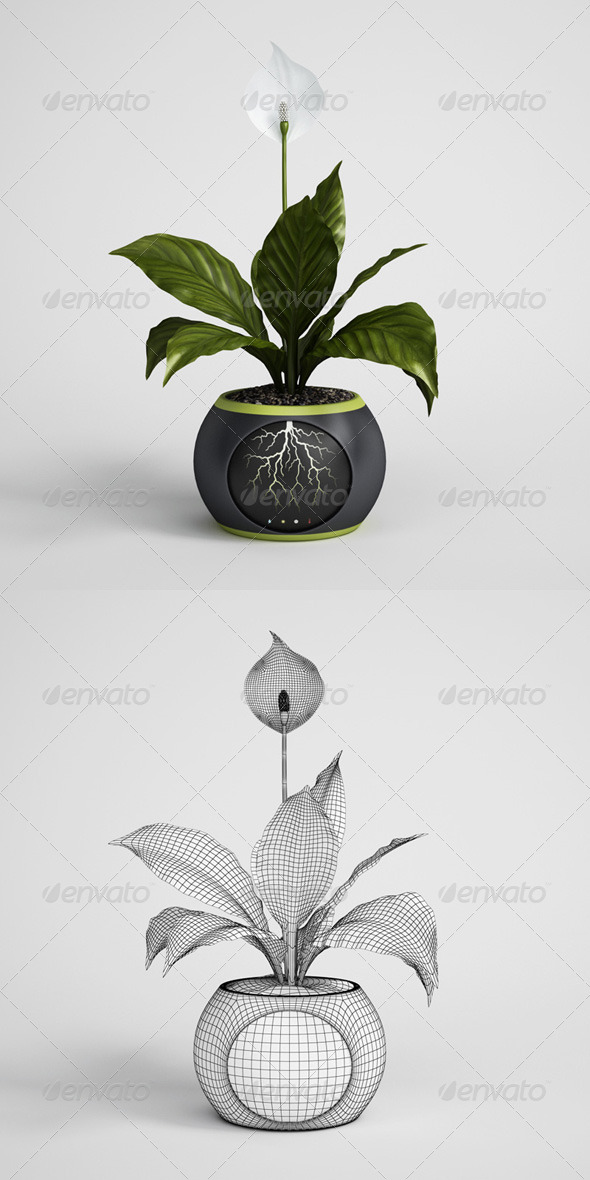 3DOcean CGAxis Potted Plant 05 168183