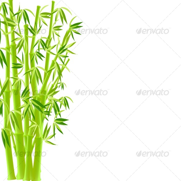GraphicRiver vector illustration of bamboo 56122