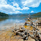 Felled trees in front of National Lake Pudacuo in China  - PhotoDune Item for Sale