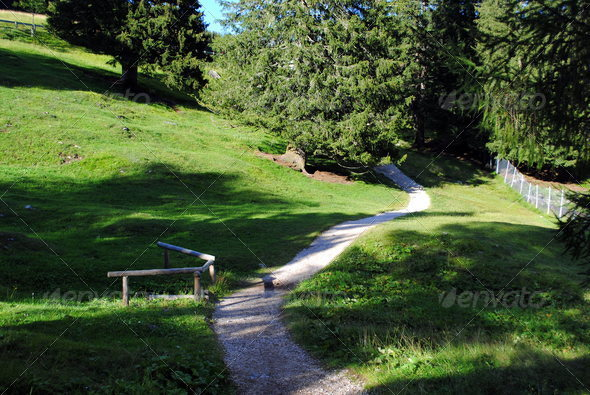 white pebbles path in green mountain landscape - Stock Photo - Images
