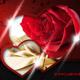 Valentines Day Slider-Graphicriver中文最全的素材分享平台