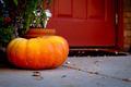 Fall Pumpkin - PhotoDune Item for Sale