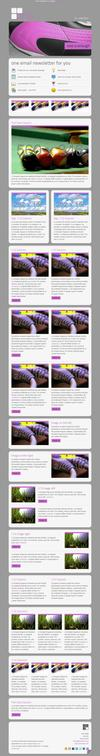 10_one-email-newsletter-with-template-builder-v09.__thumbnail