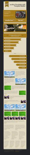 08_perfect-newsletter-with-template-builder-v07.__thumbnail