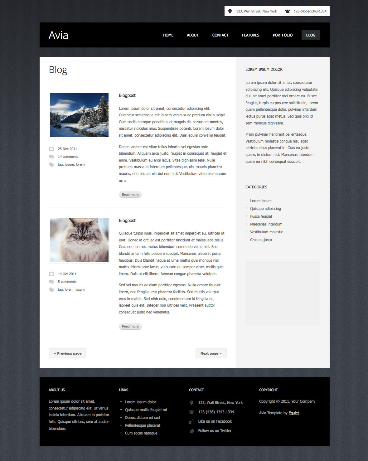 Avia - Clean Business Template