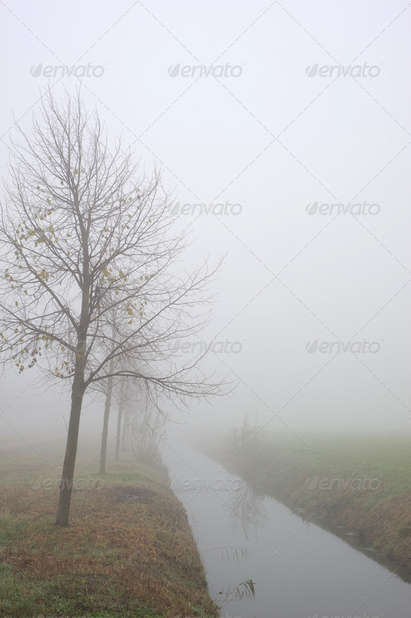 River into the fog - Stock Photo - Images