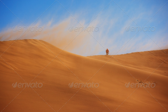Desert Storm and the lonely traveler - Stock Photo - Images