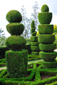 Topiary - buxus - Decorative green park – Botanical garden Funchal, Madeira - PhotoDune Item for Sale