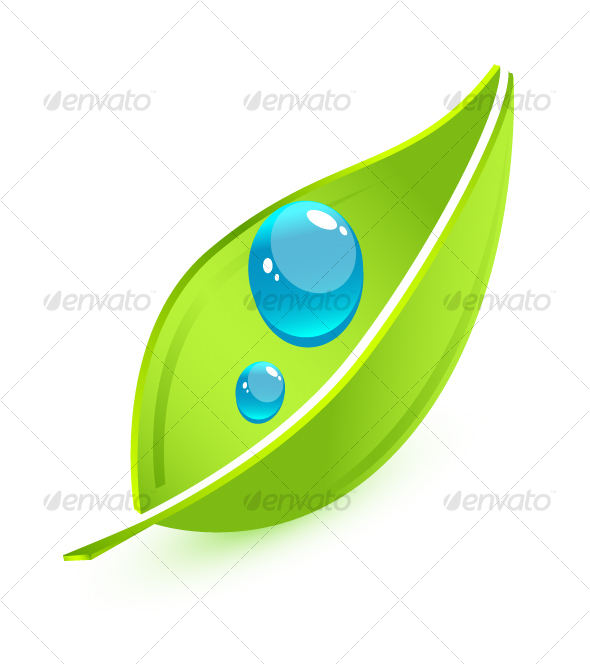 Single Green Leaf Vector Vector leaf - nature