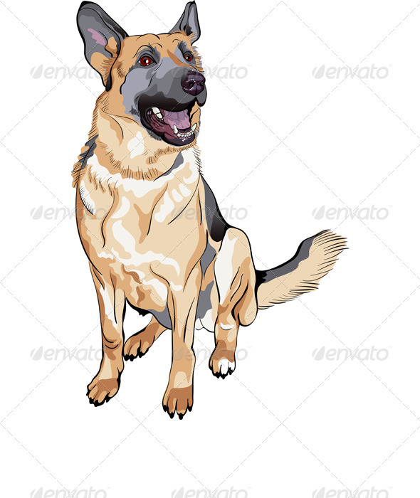 Graphic River Vector Color Sketch Dog German Shepherd Breed Vectors -  Characters  Animals 1520836