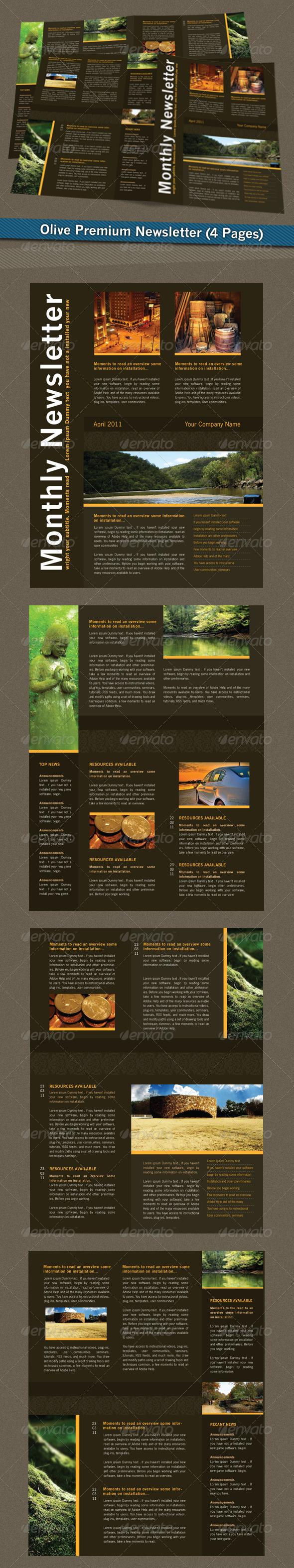 GraphicRiver Olive Premium Newsletter 179891
