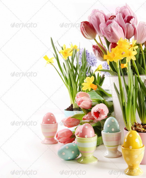 Easter eggs  with spring flowers on white - Stock Photo - Images
