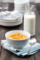 Bowl of Cereal With Milk on Rustic Table - PhotoDune Item for Sale