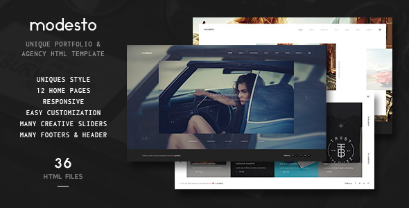 Modesto - Unique Portfolio & Agency Template HTML
