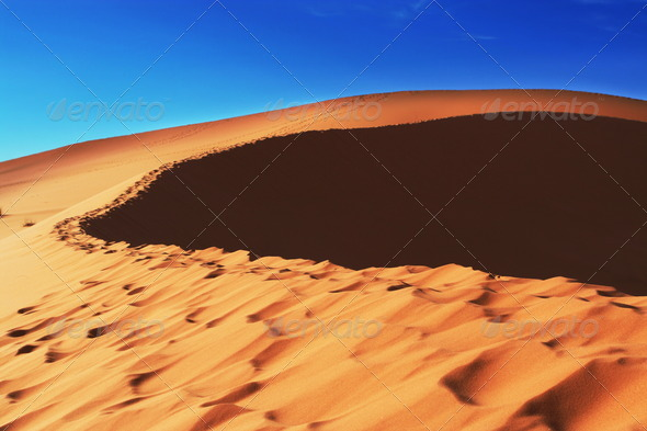 Dunes - Stock Photo - Images