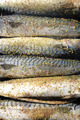 grilled fishes background - PhotoDune Item for Sale