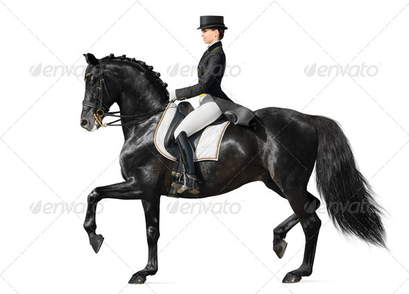 Dressage - Black Horse and Woman - Stock Photo - Images