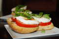 Delicious Tomato Basil Mozzarella Sandwich - PhotoDune Item for Sale