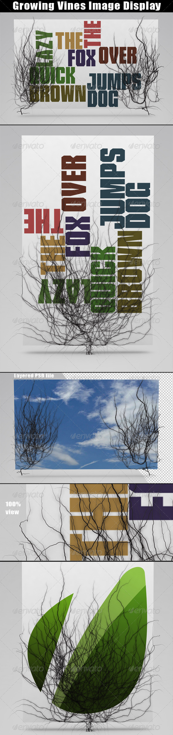 GraphicRiver Growing Vines Image Display 1574206