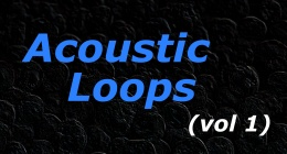 Acoustic Loops (vol 1)