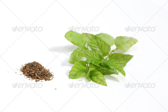 Mint - Stock Photo - Images
