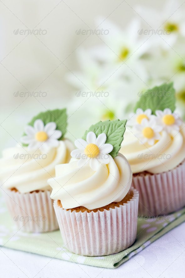 Daisy cupcakes - Stock Photo - Images