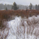 Winter Scenic Snowstorm - VideoHive Item for Sale