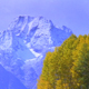 Teton Mountains and Aspens - VideoHive Item for Sale