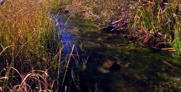 [VideoHive 1582812] Clear Stream | Stock Footage