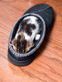 kitten sleeping in shoe - PhotoDune Item for Sale