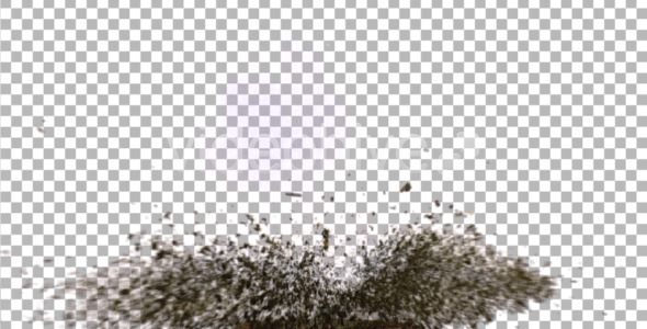Dirt Explosion Motion Graphics Videohive