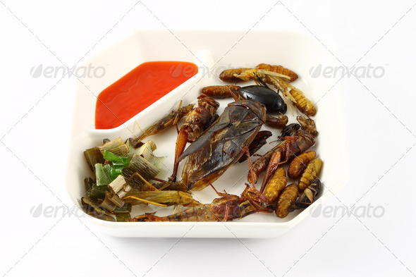 Spicy herb fried insect wings in food dish. - Stock Photo - Images