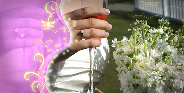 VideoHive Wedding Love Story 1581999