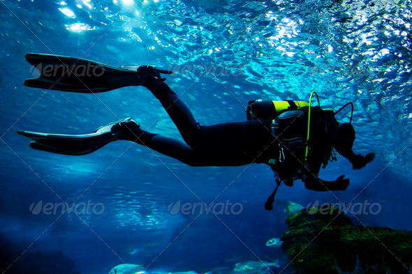 Stock Photo - PhotoDune Diving in the ocean underwater 1673051