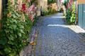 Small town street with hollyhocks. Dragør, copenhagen, Denmark - PhotoDune Item for Sale