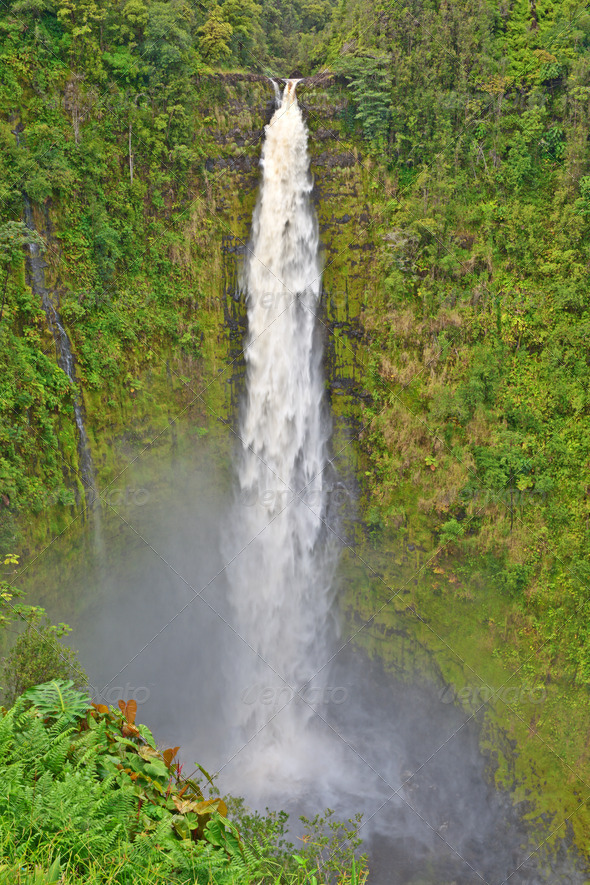 Akaka Falls, Big Island, Hawaii - Stock Photo - Images