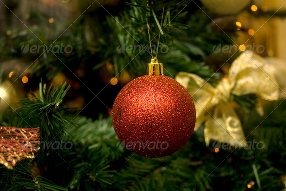 Christmass tree - Stock Photo - Images