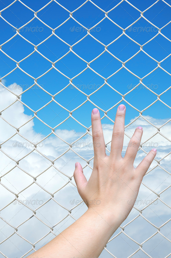 hand holding on chain link fence - Stock Photo - Images