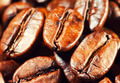 Coffee beans. Macro. - PhotoDune Item for Sale